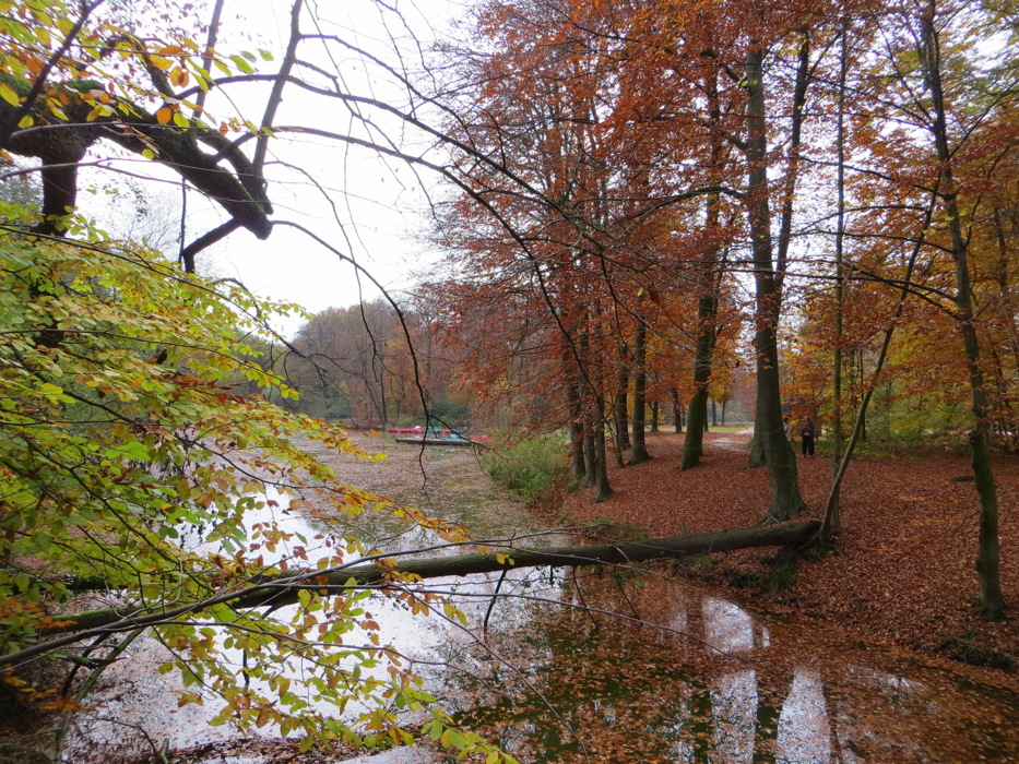 photoblog image Autumn in the Bagno Park
